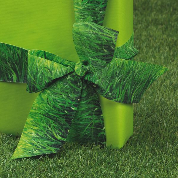 Cactus & Co.: 4 proposte per nastri eco-style